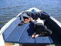 Entspannen auf dem Wasser